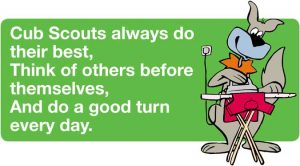 1st Marown Cub Scout Law